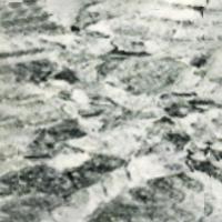 Durapiso Línea Century Mod. CENTURY 864